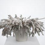 Métaphores mortes II, porcelaine, terre sigillée, 28 x 58 x 58 cm (photo: Étienne Dionne)